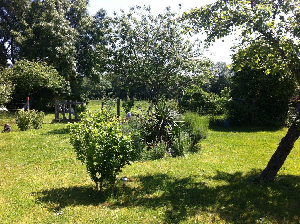 le jardin du Gîte les Myosotis en Berry