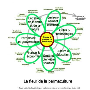 fleur permaculture
